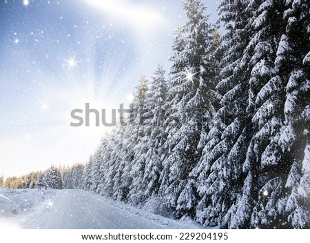 Christmas background with winter road and snowy fir trees  - stock photo