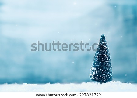 Christmas background. Xmas fir tree on snow. - stock photo