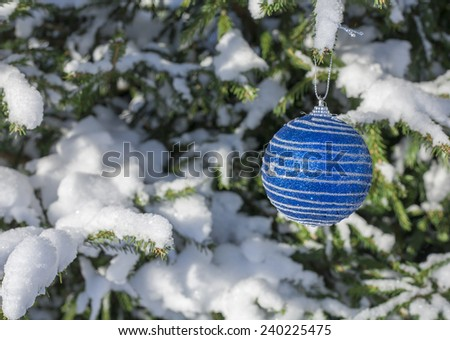 Christmas ball blue brilliant hanging on christmas tree covered with snow in winter - stock photo
