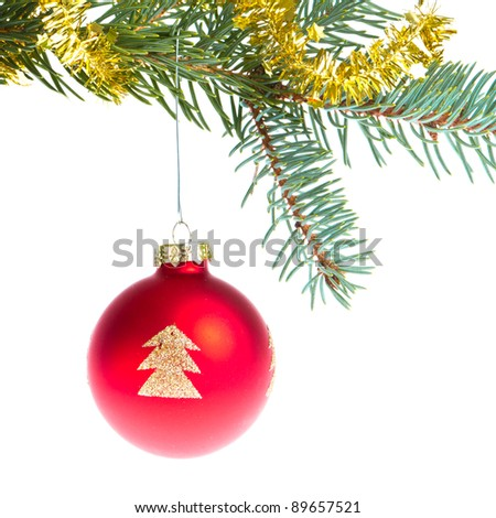 christmas ball on branch isolated on white background