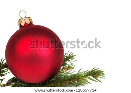 christmas ball on fir branch, white background