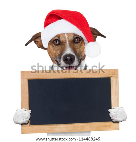 christmas banner placeholder dog wood board - stock photo