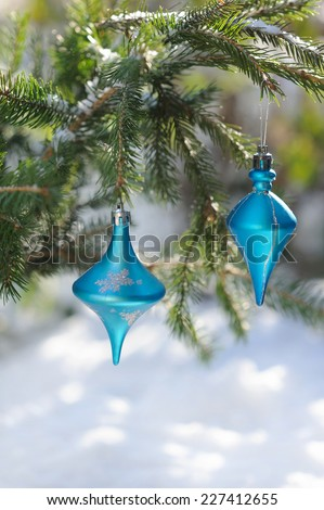 Christmas blue balls on fir branch outdoors in bright sunshine - stock photo
