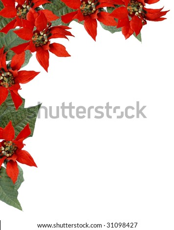 Christmas border frame of artificial red poinsettia flowers with green leaves located upper left corner. Isolated on white with copy space center and lower right. Vertical composition. - stock photo