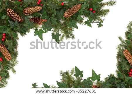 Christmas border of holly, ivy, pine cones and blue spruce fir leaf sprig isolated over white background. - stock photo