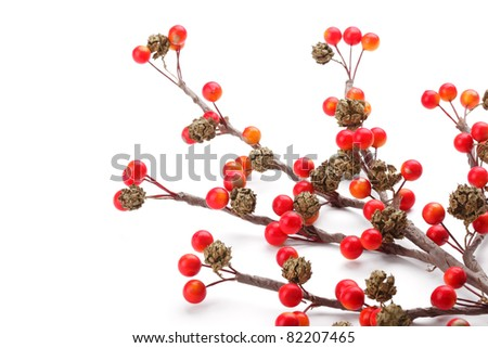 Christmas branch of red berries, isolated on white background. - stock photo