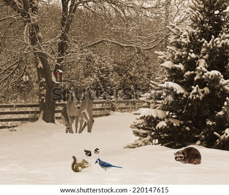 Christmas card design with a mother deer, and her baby curiously examining a baby squirrel sharing a peanut with a hungry bluejay, and two cute chickadees in the snow, waiting to get to the feeder.  - stock photo