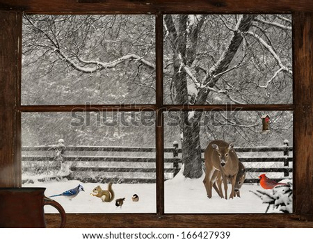 Christmas card design with animals gathering in the snow, as seen through the farmhouse window at Christmas. - stock photo