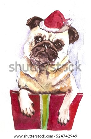 Christmas card dog in a box on a white background. Watercolor illustration.