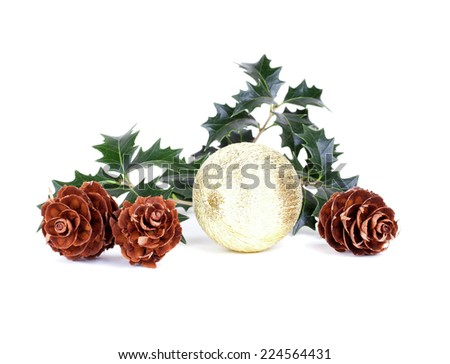 Christmas composition isolated on white background - stock photo