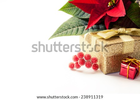 Christmas composition; with gift box and poinsettia - stock photo