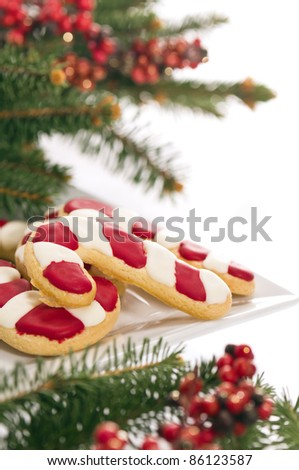 Christmas cookies decorated with real tree branches, over white