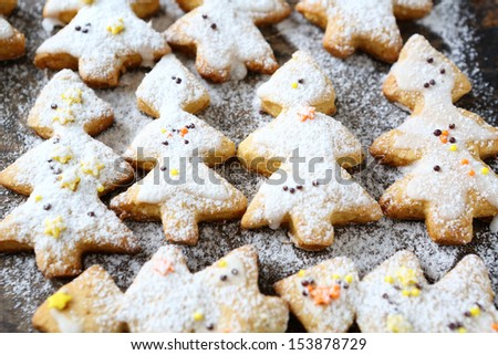 Christmas cookies in powdered sugar, food close up