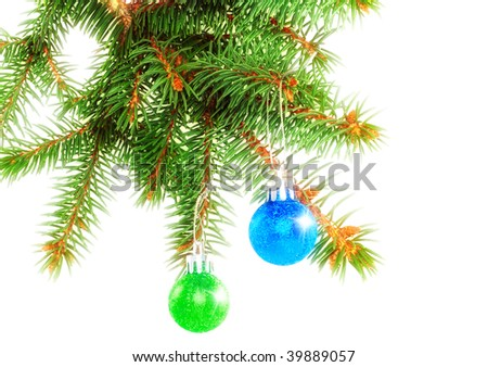 Christmas  decoration-balls on fir branches. Isolated