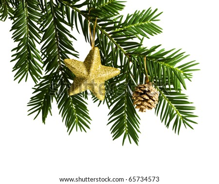 christmas decoration - fir branch with golden star and cone, isolated on white - stock photo