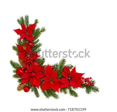 Anastasiia malinich 39 s portfolio on shutterstock for Poinsettia christmas tree frame