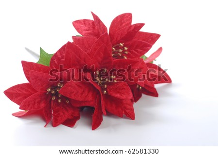 Christmas decoration isolated on white - stock photo