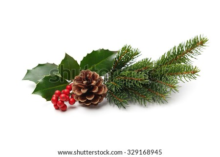 Christmas decoration of holly berry and pine cone - stock photo