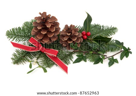 Christmas decoration of holly, ivy, mistletoe, pine cones and spruce fir leaf sprig with red ribbon isolated over white background. - stock photo