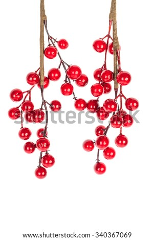 Christmas decoration red berries holly isolated on white background - stock photo