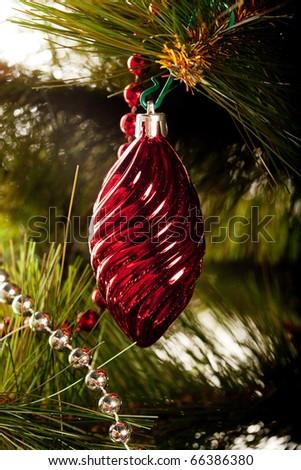 Christmas decoration. Studio shot. - stock photo