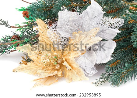 Christmas decoration with flowers and fir-tree branch. - stock photo