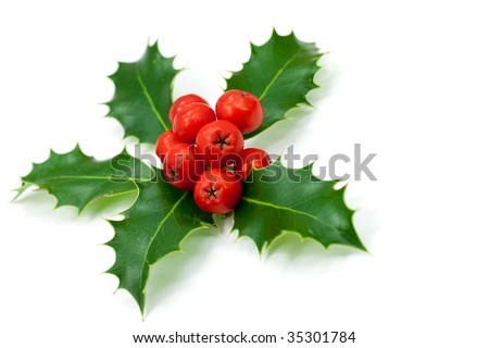 christmas decoration with holly leaves and berries,isolated on white - stock photo