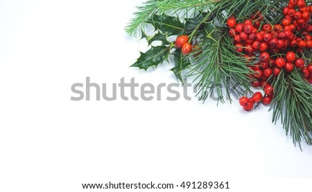 Christmas decoration with Pine needles, red berries, Isolated on white background.