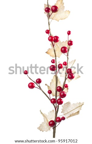 Christmas decoration with red berries and leafs - stock photo