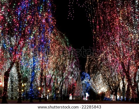 Christmas decorations outdoors lights on trees stock photo royalty christmas decorations outdoors lights on trees night mozeypictures Gallery