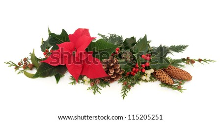 Christmas decorative floral arrangement of a poinsettia flower, holly, mistletoe,  ivy and cedar cypress leaf sprigs with pine cones over white background. - stock photo