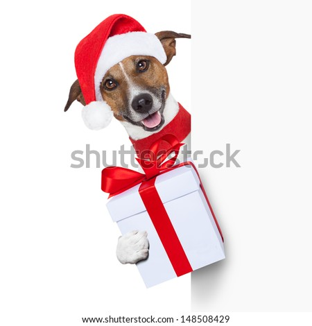 christmas dog as santa behind placard with big present as a gift