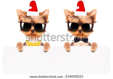 christmas dog as santa holding white paper banner - stock photo