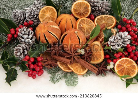 Christmas dried orange fruit with cinnamon and star anise spice, holly, mistletoe, pine cones, fir and snow. - stock photo