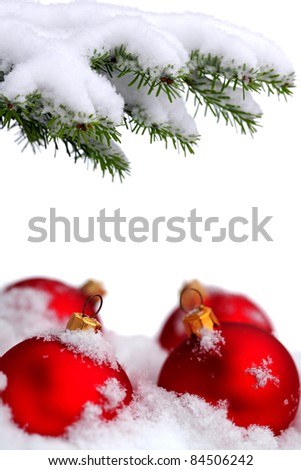 Christmas evergreen spruce tree and red glass balls on snow background - stock photo