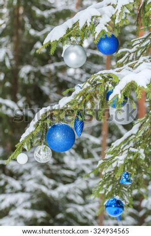 Christmas festive brilliant baubles silver and blue ornaments outdoors are on snowy fir branches - stock photo