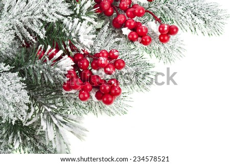 Christmas fir decoration with red berries, corner border, isolated on white - stock photo