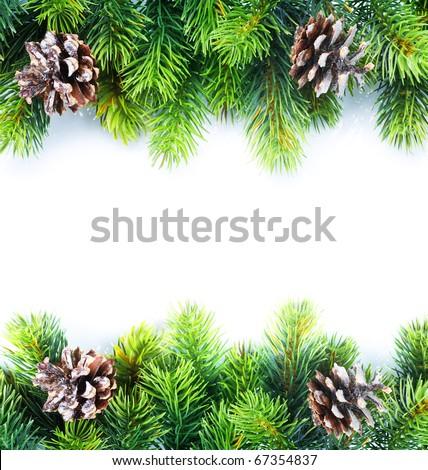 Christmas Fir Tree Border - stock photo