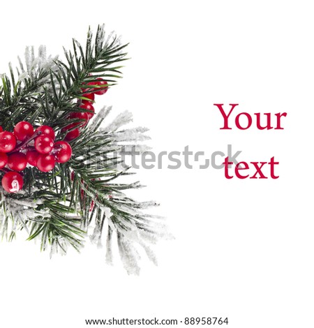 Christmas fir twigs with red berries isolated on white - stock photo