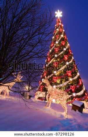 Christmas fir with decorations in winter at night - stock photo