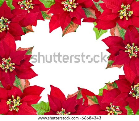 Poinsettia border stock images royalty free images for Poinsettia christmas tree frame