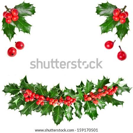 christmas garland of european holly Ilex isolated on white background  - stock photo