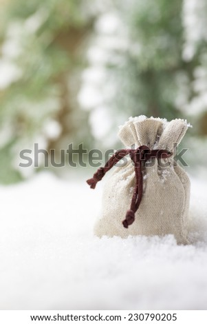 Christmas gift bag in the snow.
