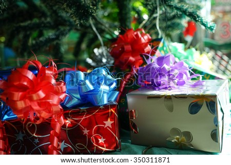 Christmas gift box lay under the pine tree, Selective focus - stock photo