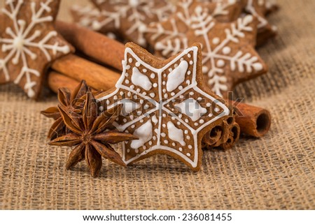 Christmas gingerbread cookies and spices on fabric background - stock photo