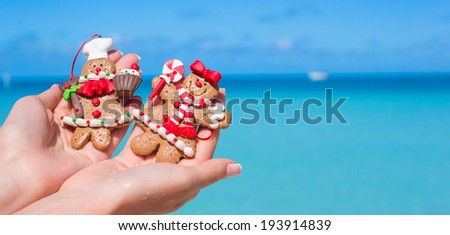 Christmas gingerbread cookies in hands against the turquoise sea - stock photo