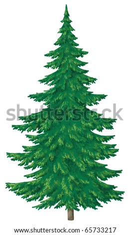 Christmas green fur-tree, isolated on white. Winter picture - stock photo