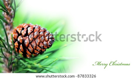 Christmas greeting card with  evergreen tree and cone, decoration background - stock photo