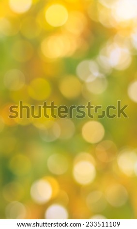 Christmas holiday lights bokeh background