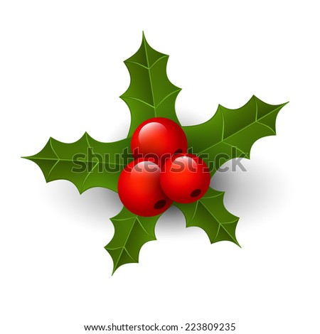 Christmas holly - stock photo